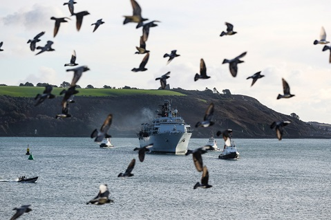 A flock of birds is stirred as HMS Albion passes the Hoe, accompanied by three tugs
