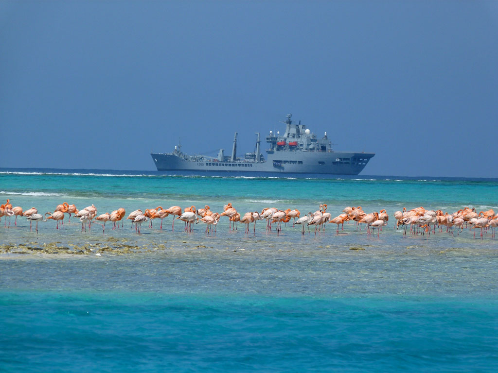RFA Wave Knight off the island of East Caicos.