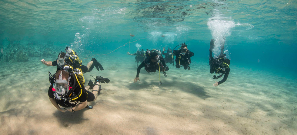 Navy divers tested amid the Red Sea's coral reefs