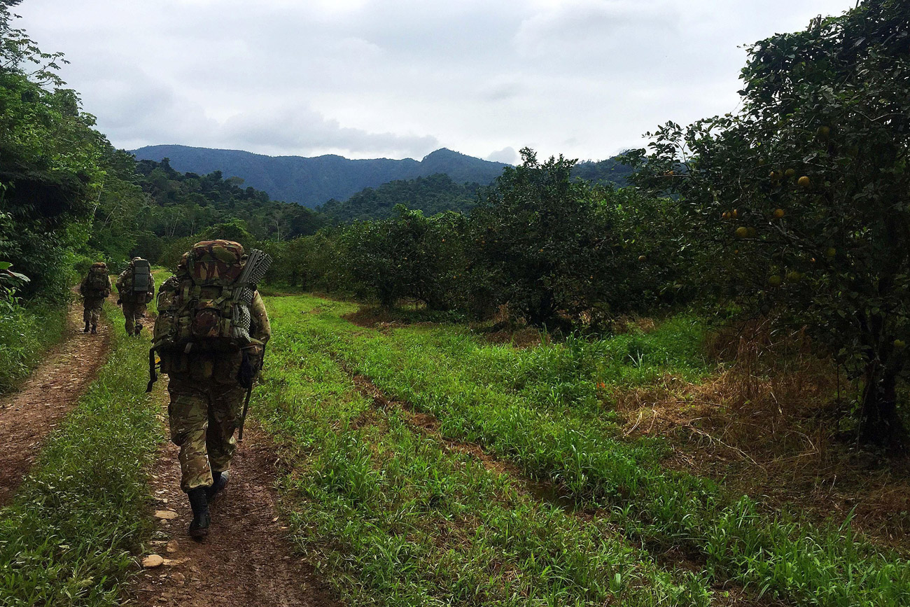 Royal Marines hone their jungle fighting skills